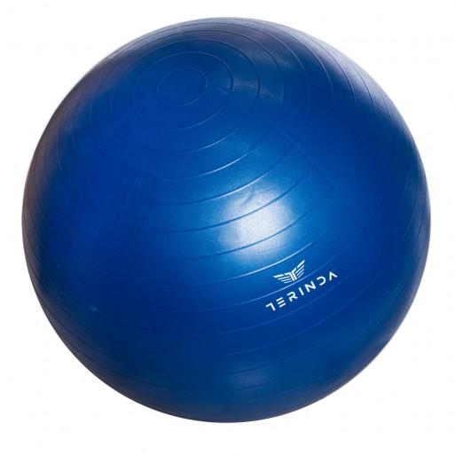 Žoga za gimnastiko