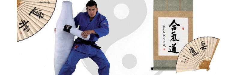 Kendo, Aikido