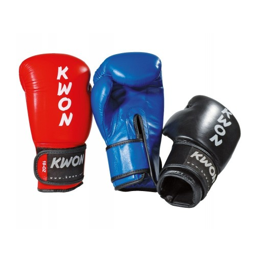 Boksarske rokavice Ergo Champ