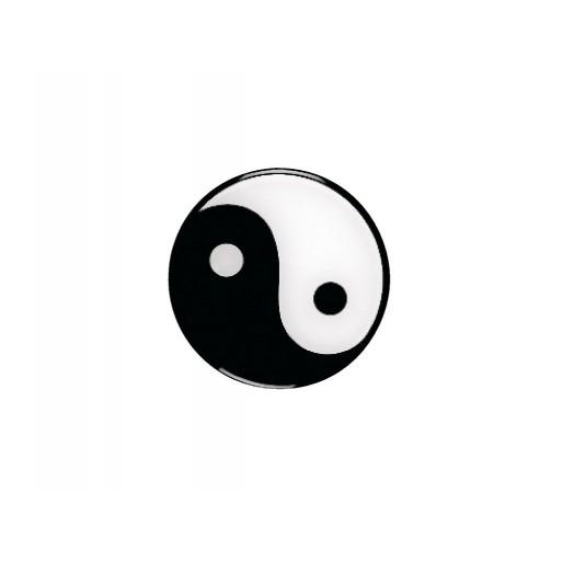 Nalepka Yin Yang